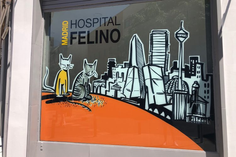 Decoración Hospital Felino Madrid